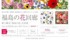 福島の花回廊