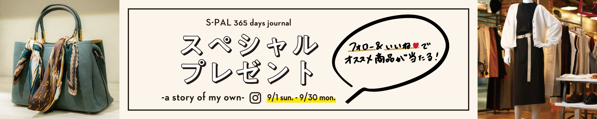 S-PAL 365 days journal