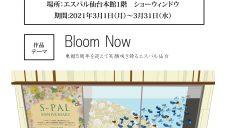 エスパル仙台×宮城大学 コラボレーション装飾を展開!